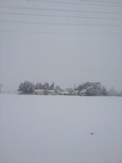 雪の蔵久.JPG